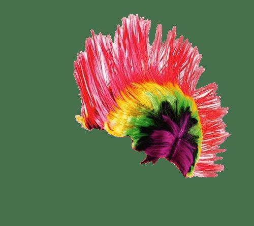 Wig Punker Rainbow