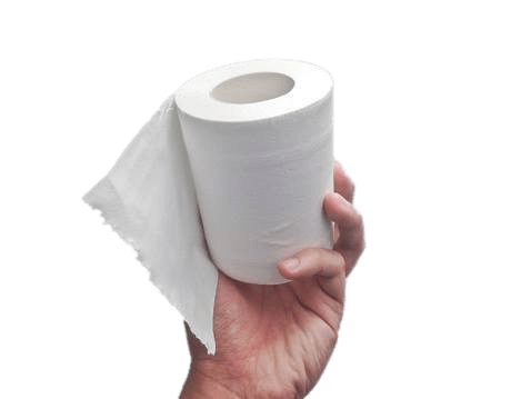 Toilet Paper Roll In Hand