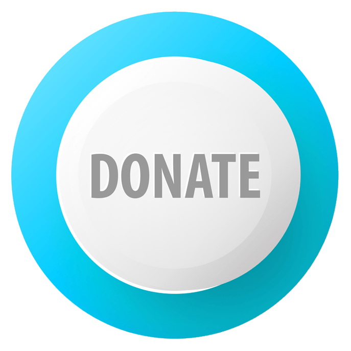 Donate Blue and White Button