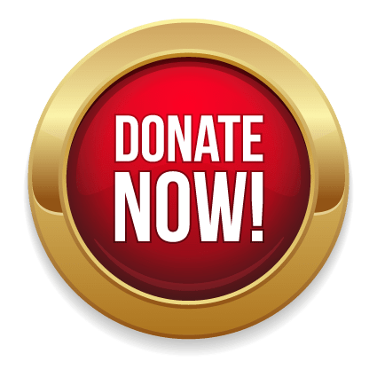 Donate Now Gold and Red Button