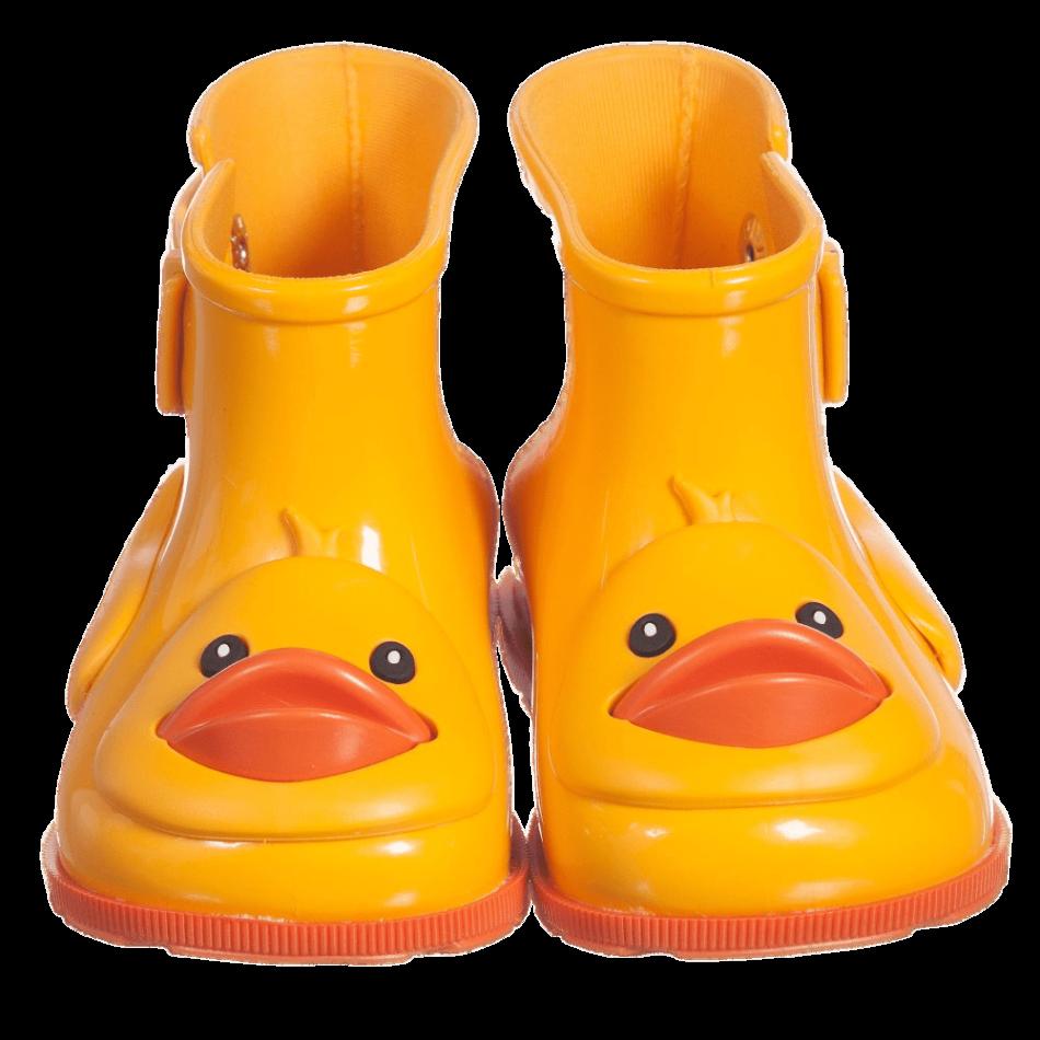 Wellies Ducks