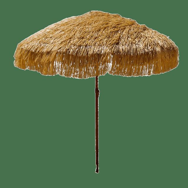 Parasol Rapphia