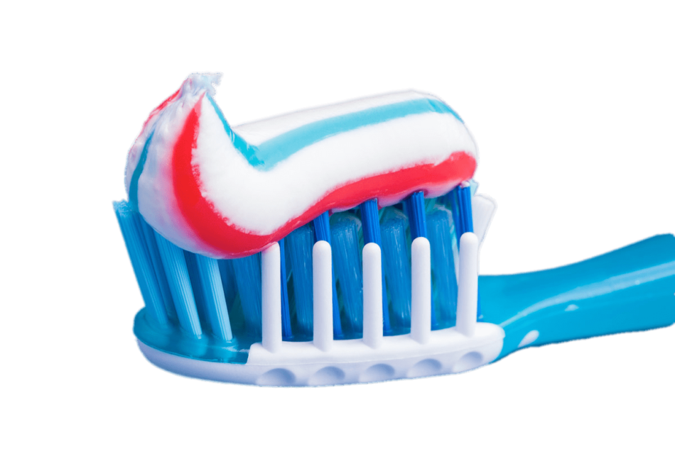 Red and Blue Toothpaste on Brush