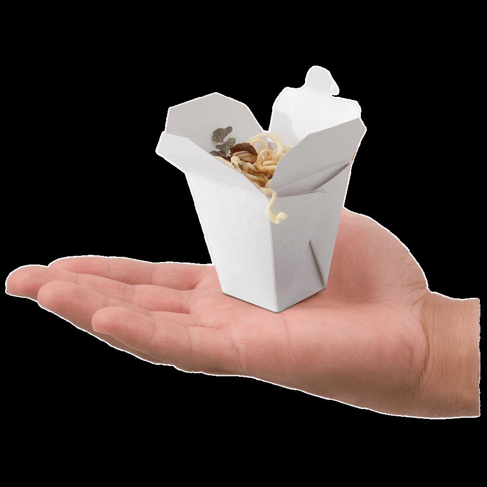 Mini Take Away Box on Hand