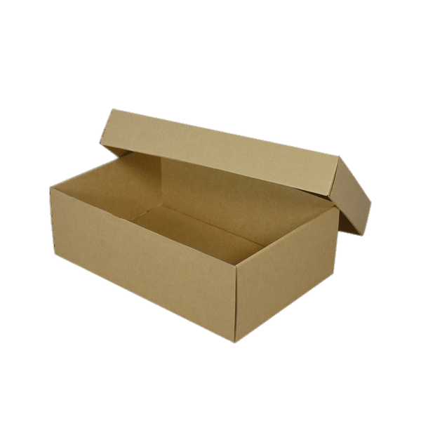 Empty Brown Shoebox