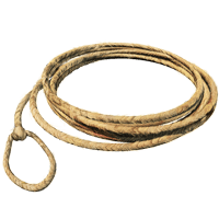 Lasso Small Loop