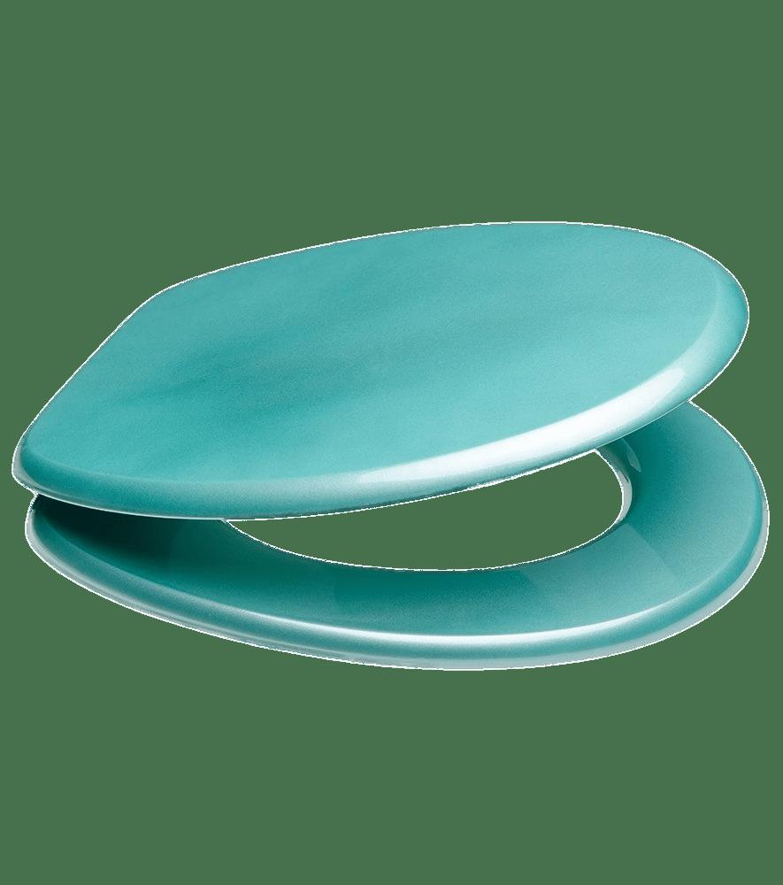 Light Blue Toilet Seat